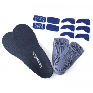 Vectorthotic Insoles with Modifications